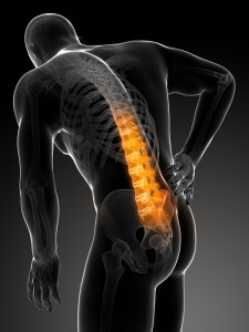 Back Pain Image website